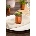 David Tutera Copper  Spot-Plated Glass Votives  holder (12pcs)